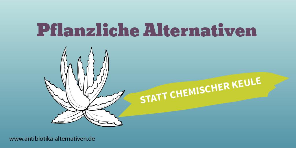 Pflanzliche Alternativen