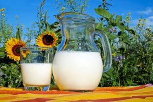 Antibiotika und Milch?
