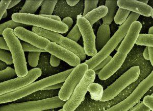 Resistente Bakterien?